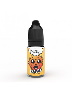 Kawa Summer Spicy 10ML E.Tasty - E-liquide JohnnyVape.fr